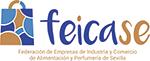 Feicase
