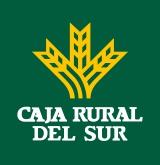 Logo_CRSur_Brand_vertical (vectorizado)